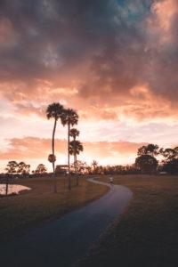 Royal Palm Beach Sunset